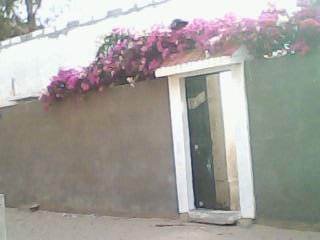Dans La Région Naturelle Du Gandiol à 18 Kms Centre Ville De Saint Louis En Bordure Fleuve Sénégal Et Face Langue Barbarie Vente D Une Villa
