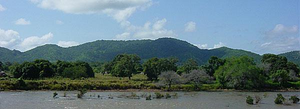 Niokolo Koba Parc National